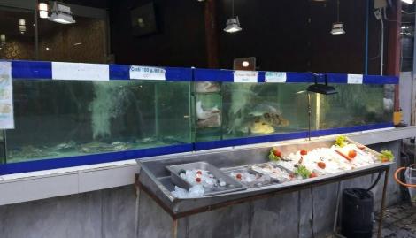 ซีฟู้ดฮาล้าลกระบี่  ร้านอาหารฮาล้าล